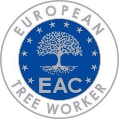 European-tree-worker
